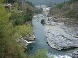 080403yosino_yumenowada