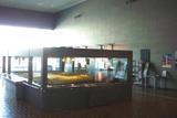 081019museum_freezone