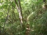 090618chausuyama3