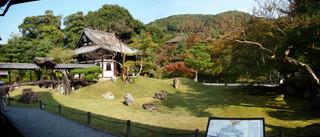 131030sannezaka_kodaiji08